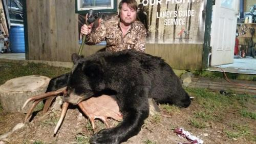 Guided Maine bear hunt