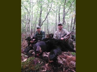Hound black bear hunt
