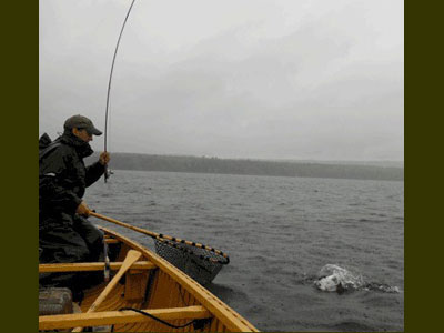Chartered fishing in Grand Lake Stream Maine