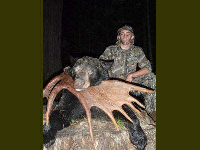 Bear hunts over bait in Maine
