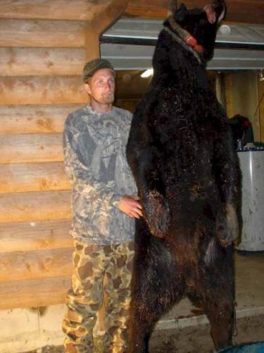 Maine black bear hunting