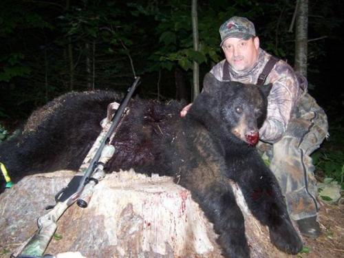 Bear hunting guide services in Maine