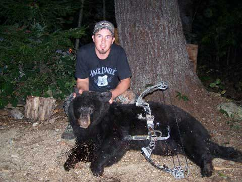 Guided blackbear hunt in Maine