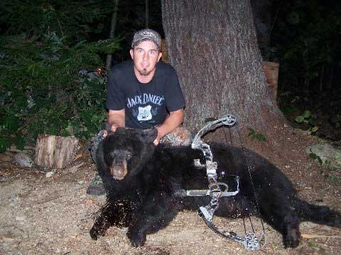 Guided blackbear hunt in Maine