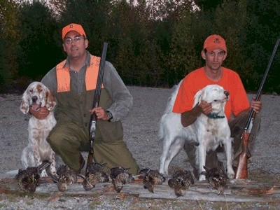 Guided bird hunts in Washington County Maine