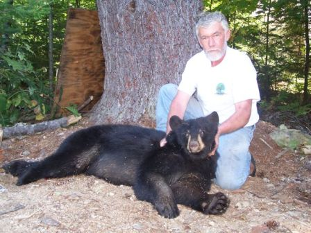 Grand Lake Stream Maine guided bear hunting