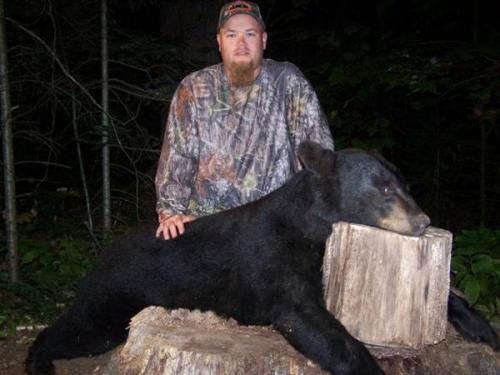 Blackbear hunting in Maine