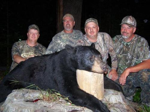 Maine blackbear hunting