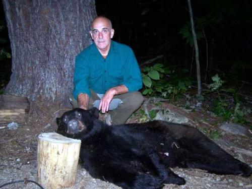 Hound blackbear hunting in Maine