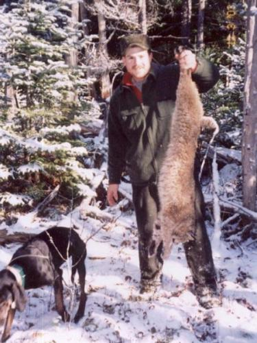 Washington County Maine bobcat hunt