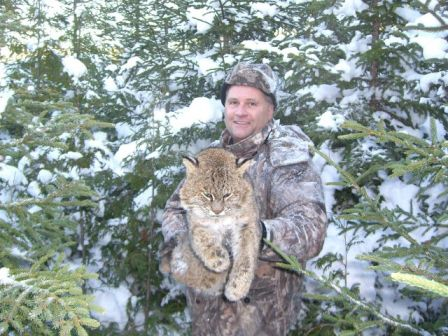 Maine bobcat hunt