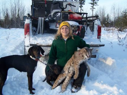 Bobcat hunting in Maine with a guide