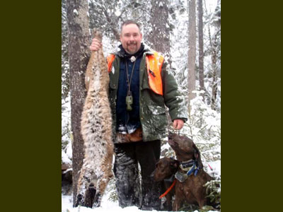 Guided bobcat hunt