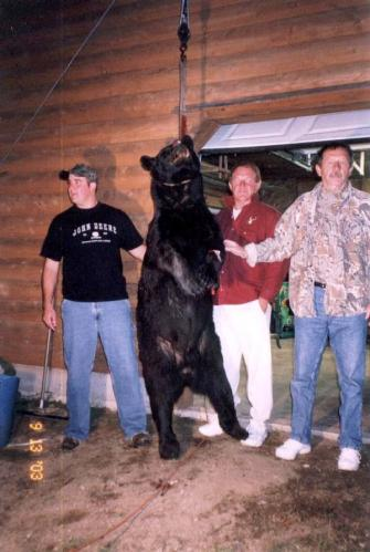 Maine blackbear guide services